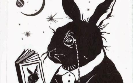 Conejo ciego en Surinam_detalle